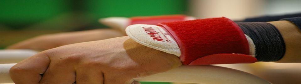 Associazione ginnastica procarate carate monza brianza for Bricoman carate brianza orari